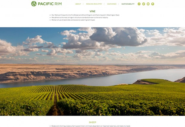 pacific-rim-vineyard