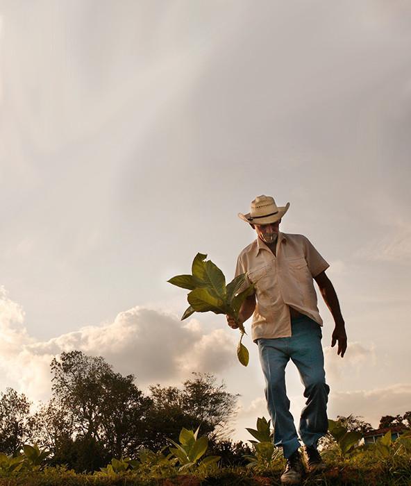 farmer-tall